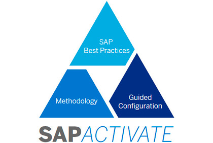 SAP Activate Ice Consultants